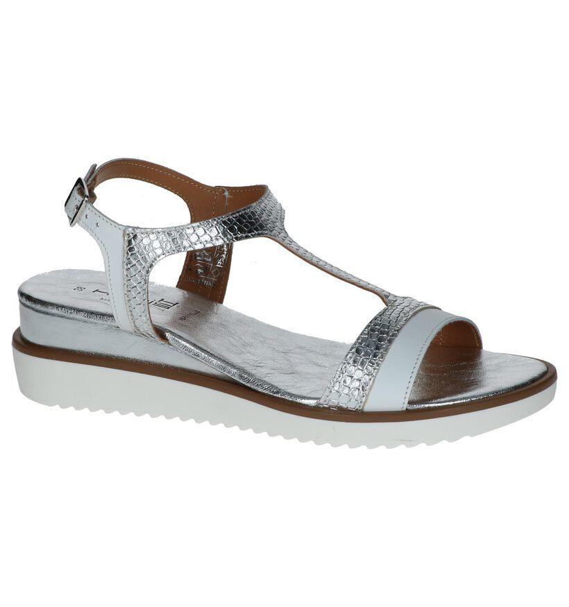 Zilveren Sandalen met Sleehak Hosis in leer (248783)