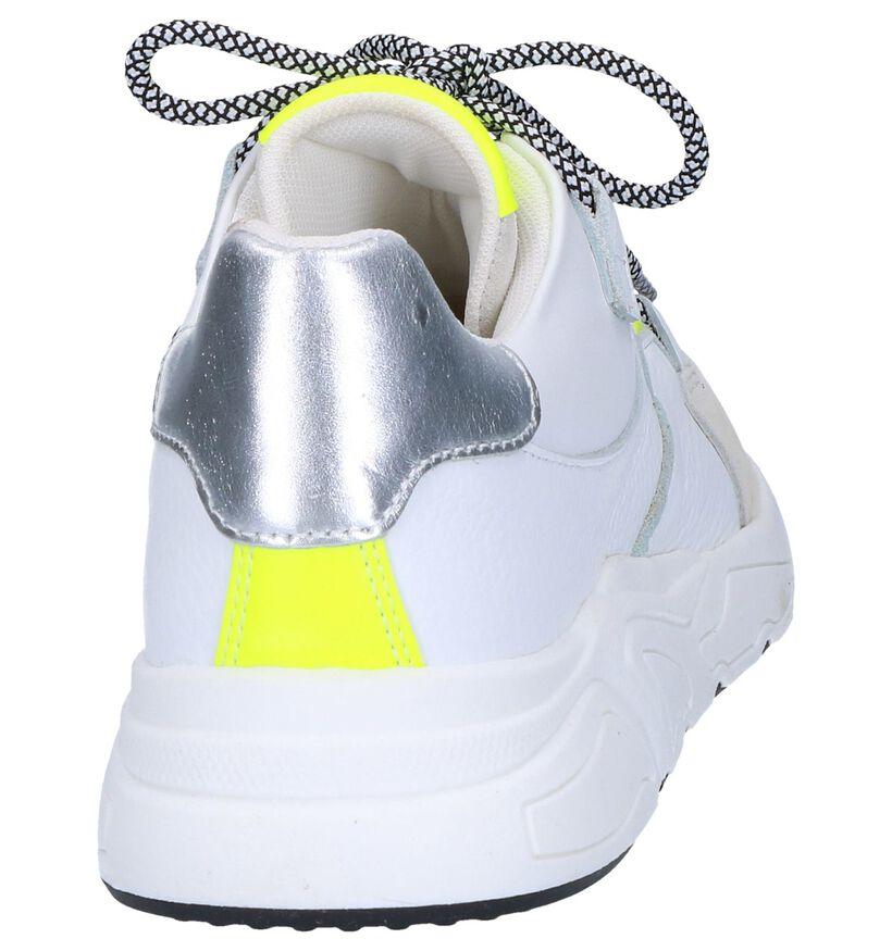 Poelman Baskets basses en Blanc en cuir (263965)