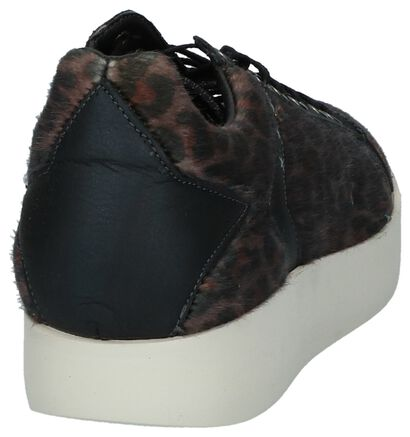 Bruine Sneakers Pantofola d'Oro Lecce Leopard Donne Low in leer (227336)