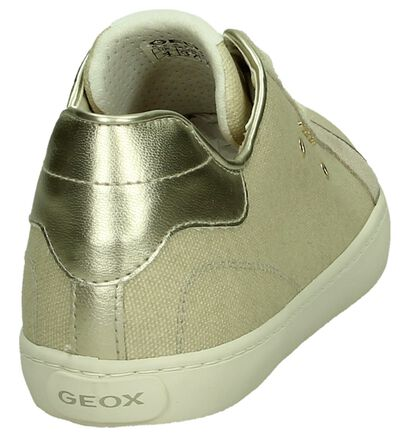 Geox Baskets basses en Beige clair en textile (190701)