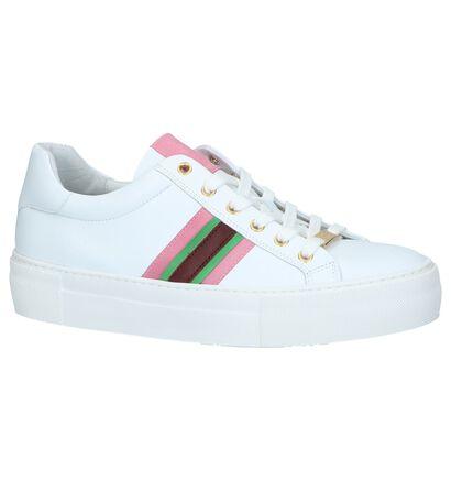 Witte Sneakers Hampton Bays in leer (241506)
