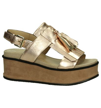 Elvio Zanon Rose Gold Sandalen met Sleehak in leer (194854)