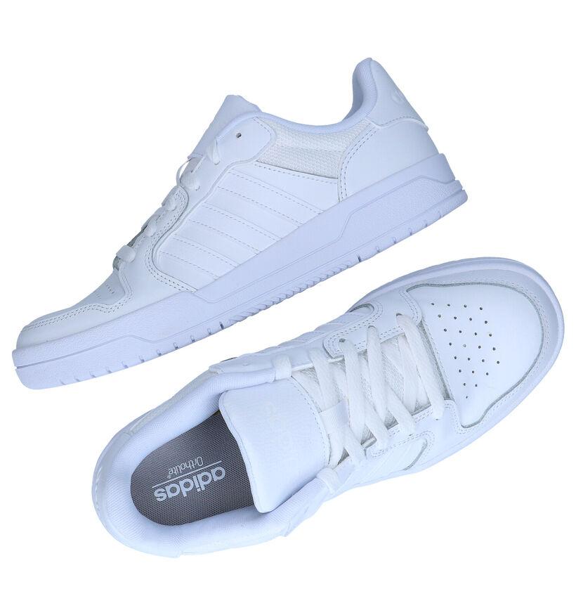 adidas Entrap Witte Sneakers in kunstleer (276466)