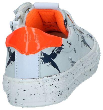 Donkerblauwe Geklede Sneakers Wild in leer (245152)