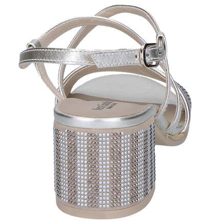 Zilveren Sandalen NeroGiardini in leer (244447)