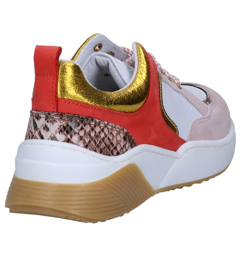 Hampton Bays Witte Sneakers in daim (270789)