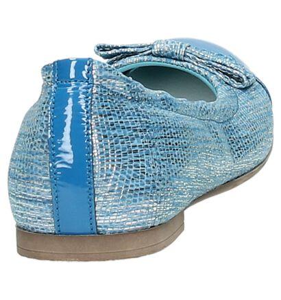 Blauwe Rondinella Ballerina, Blauw, pdp