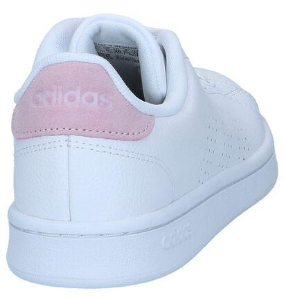 adidas Advantage Baskets en Blanc en simili cuir (237078)