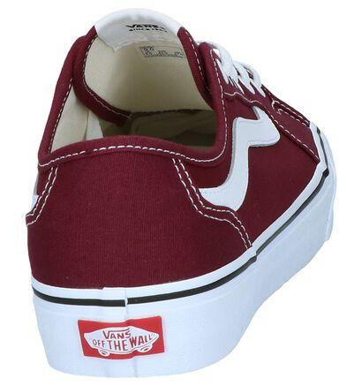Vans Skate sneakers en Gris en textile (241510)