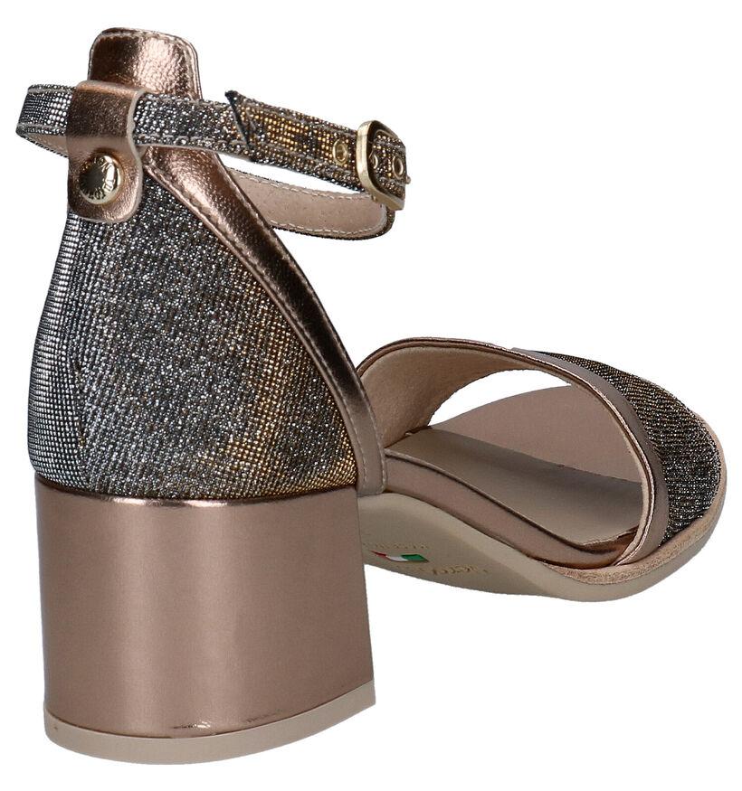 NeroGiardini Bronzen Sandalen in leer (274331)