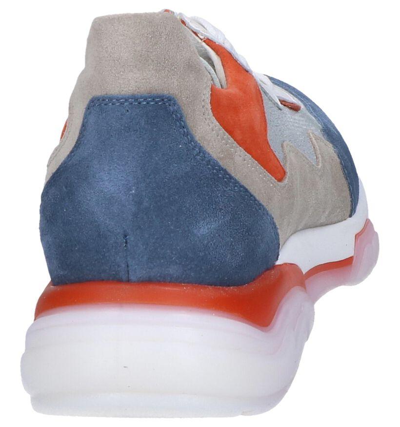 Multicolor Sneakers Tine's in leer (249604)
