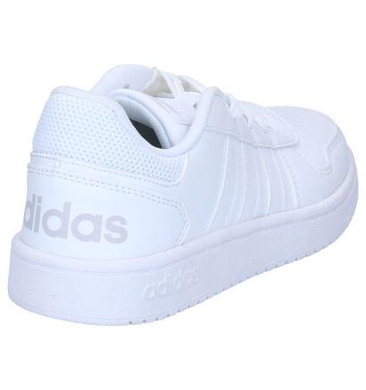 adidas Hoops Baskets basses en Blanc en simili cuir (264907)