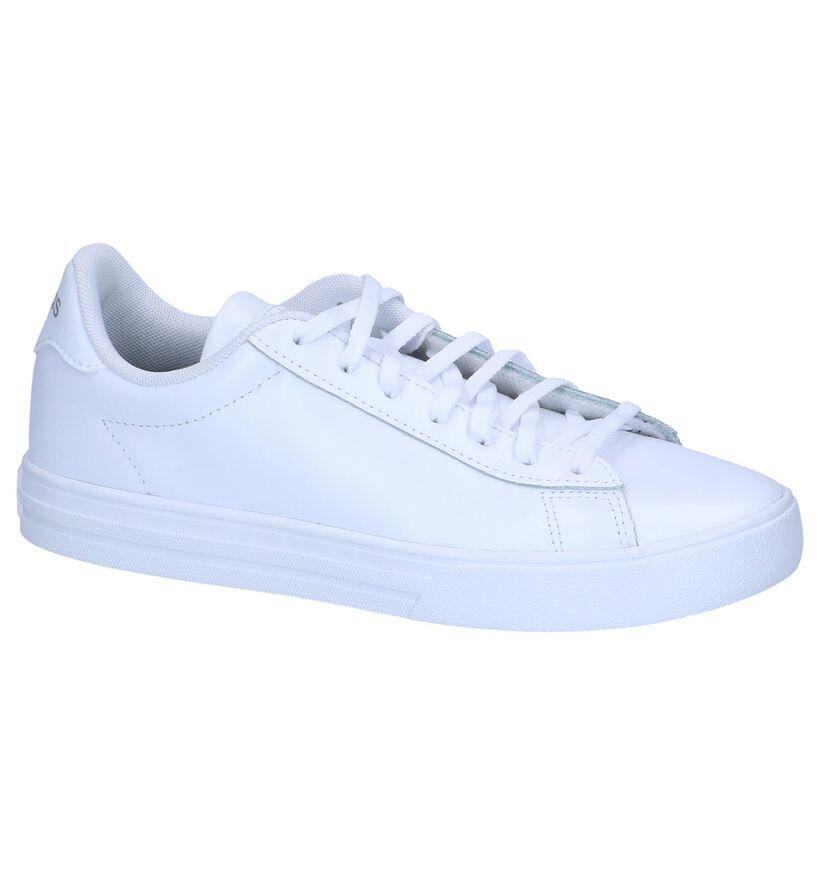 Witte Sneakers adidas Daily 2.0 in leer (237045)