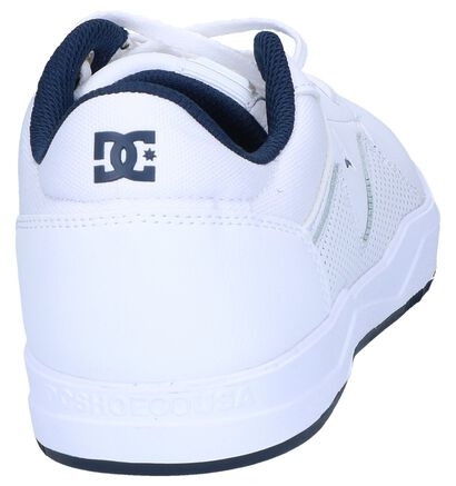 DC Shoes Baskets basses  (Blanc), Blanc, pdp