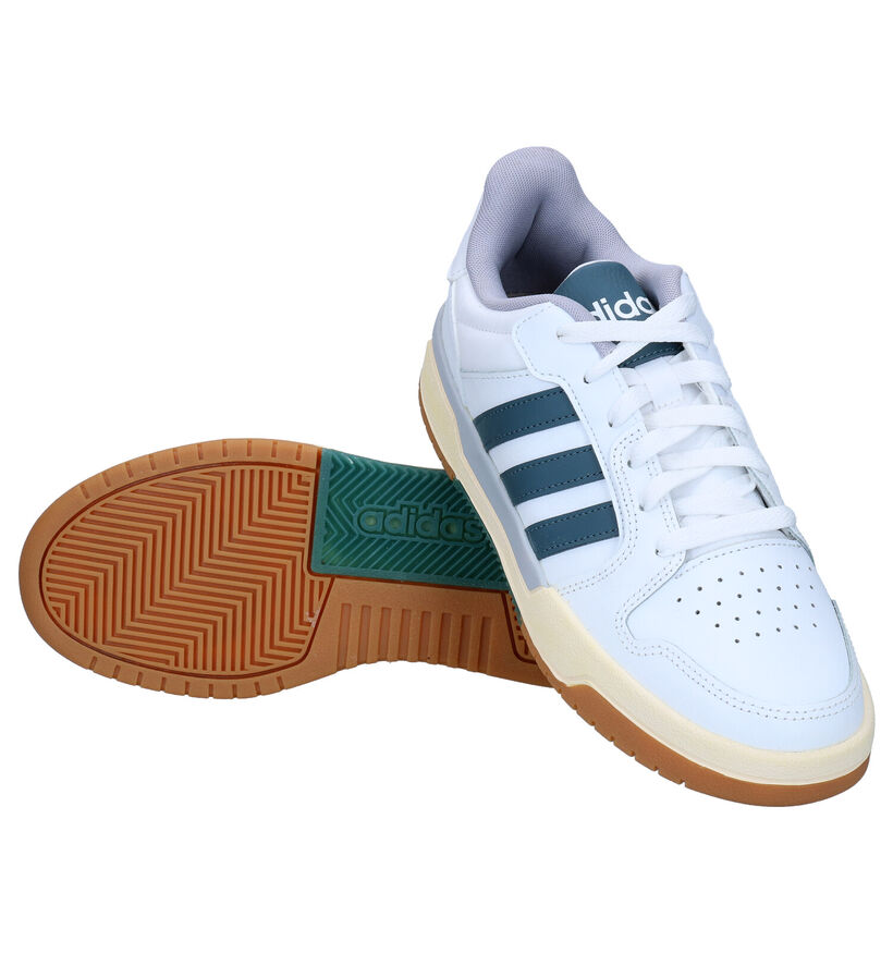 adidas Entrap Baskets en Blanc en cuir (276466)