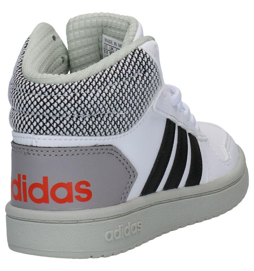 adidas Hoops Baskets en Blanc en simili cuir (252527)