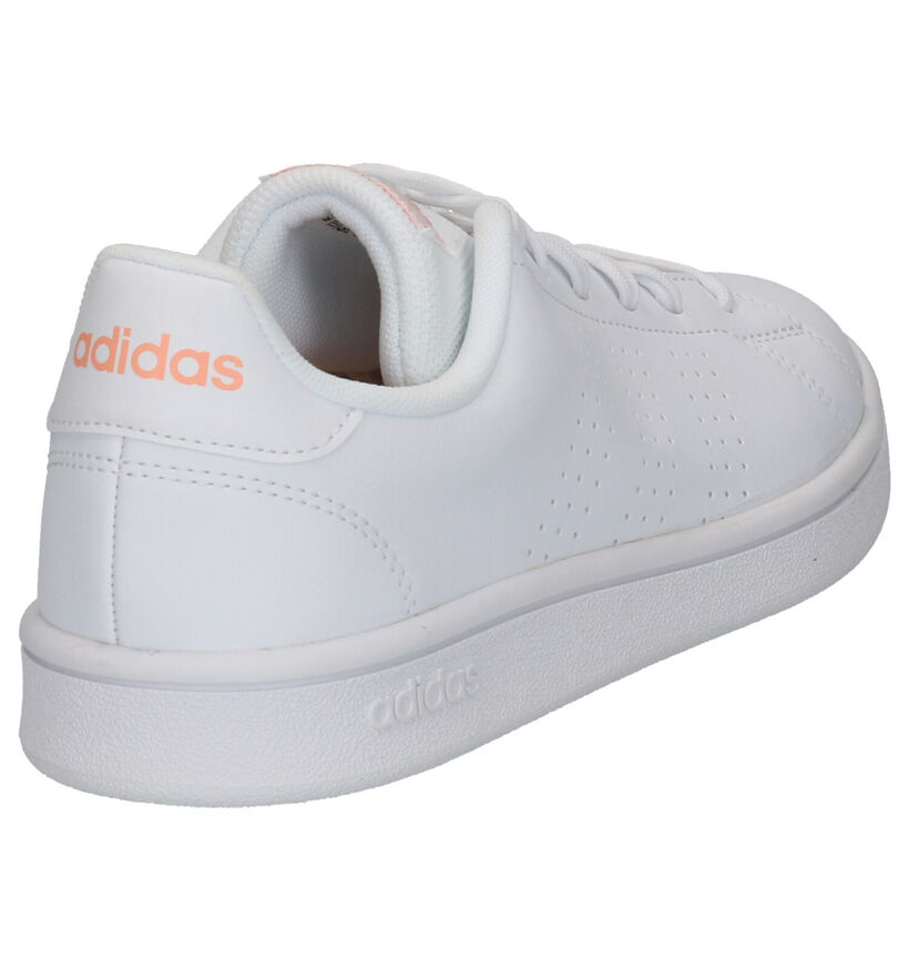 adidas Advantage Base Baskets en Blanc en simili cuir (252568)