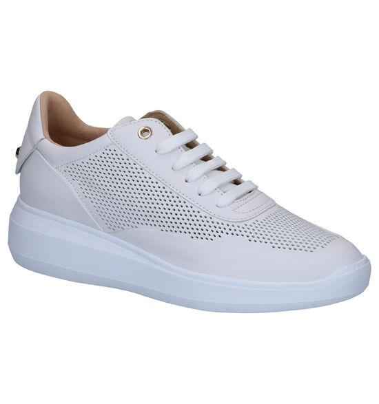 Geox Chaussures à lacets en Blanc