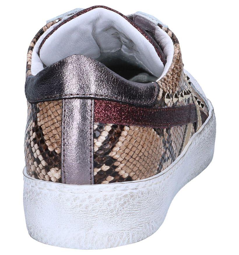 Wit/Bruine Sneakers Clue in leer (262592)