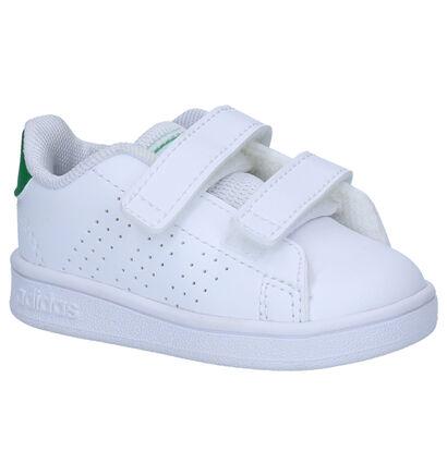adidas Advantage Witte Sneakers in imitatieleer (252539)
