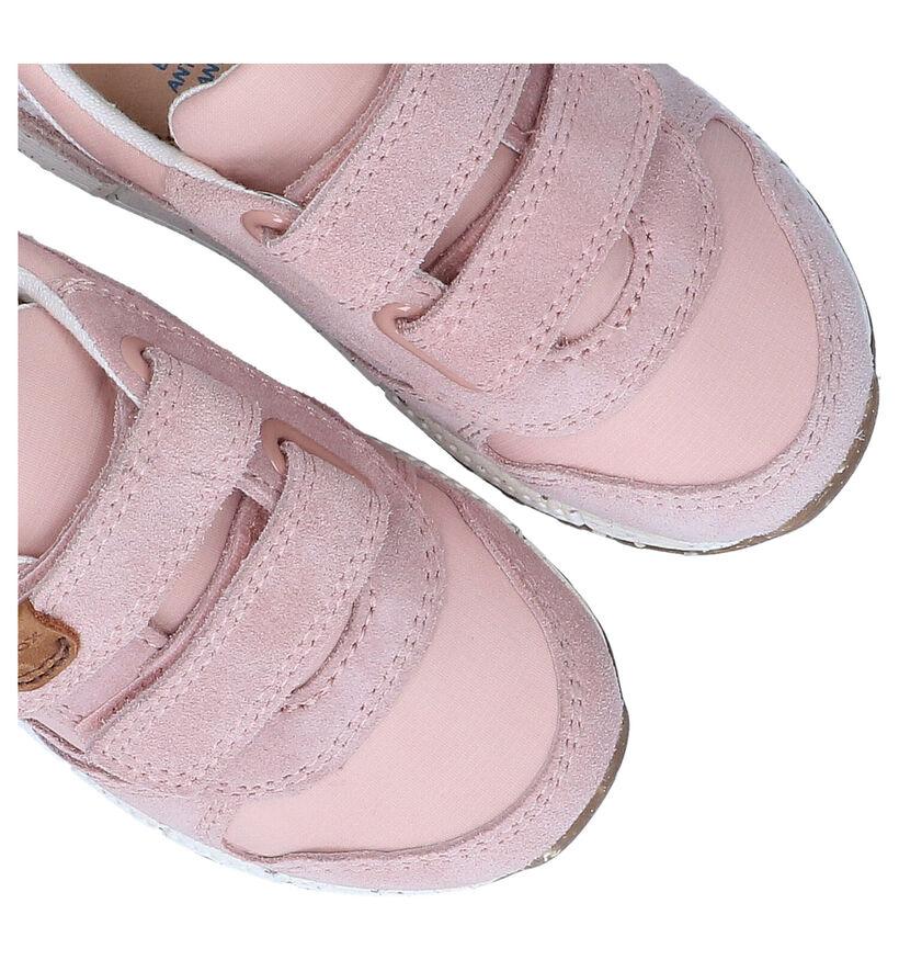 Geox Alben Baskets en Rose en textile (286940)