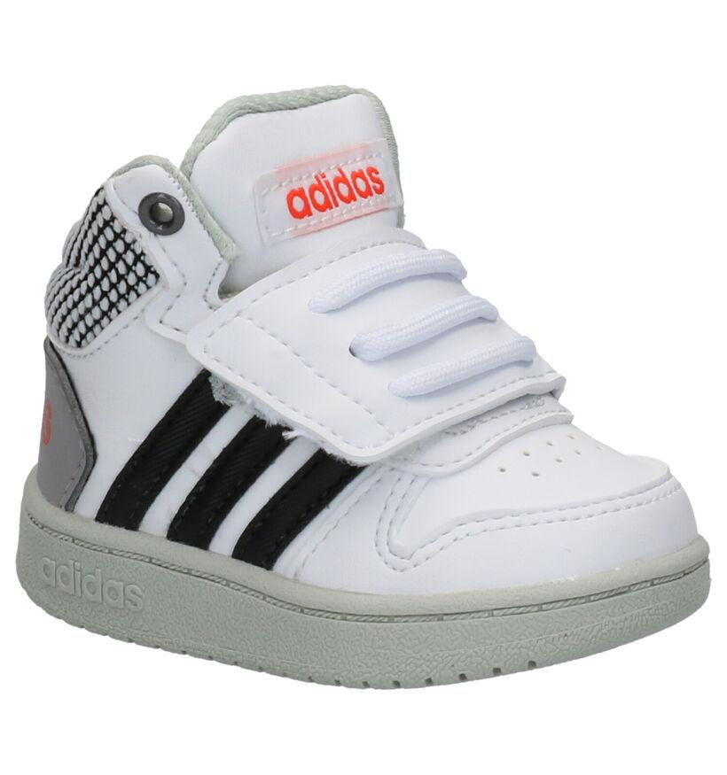 adidas Hoops Baskets pour bébé en Blanc en simili cuir (252526)