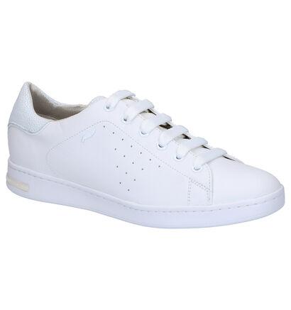 Geox Jaysen Chaussures à lacets en Blanc en cuir (266831)
