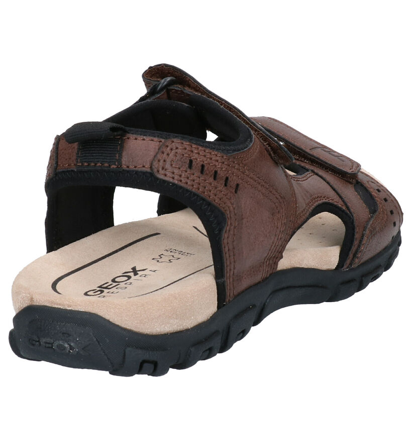 Geox Sandales en Noir en simili cuir (266688)