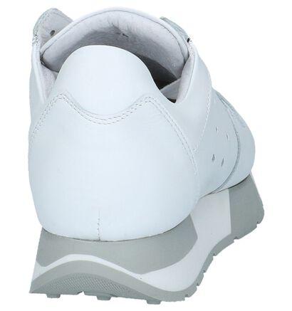 Tango Baskets basses en Blanc en cuir (223739)