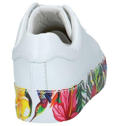 Witte Lage Geklede Sneakers met Bloemen Via Limone by Amalia, Wit, pdp