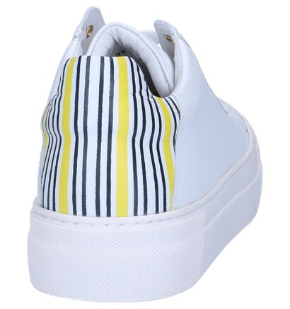 Wit/Blauwe Lage Sneakers Hampton Bays in leer (241508)