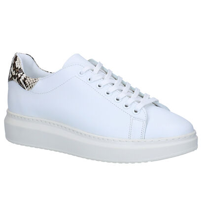 Via Limone Chaussures à lacets en Blanc en cuir (266087)