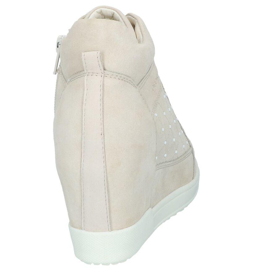 Sneakers Beige Geox Carum in daim (240301)