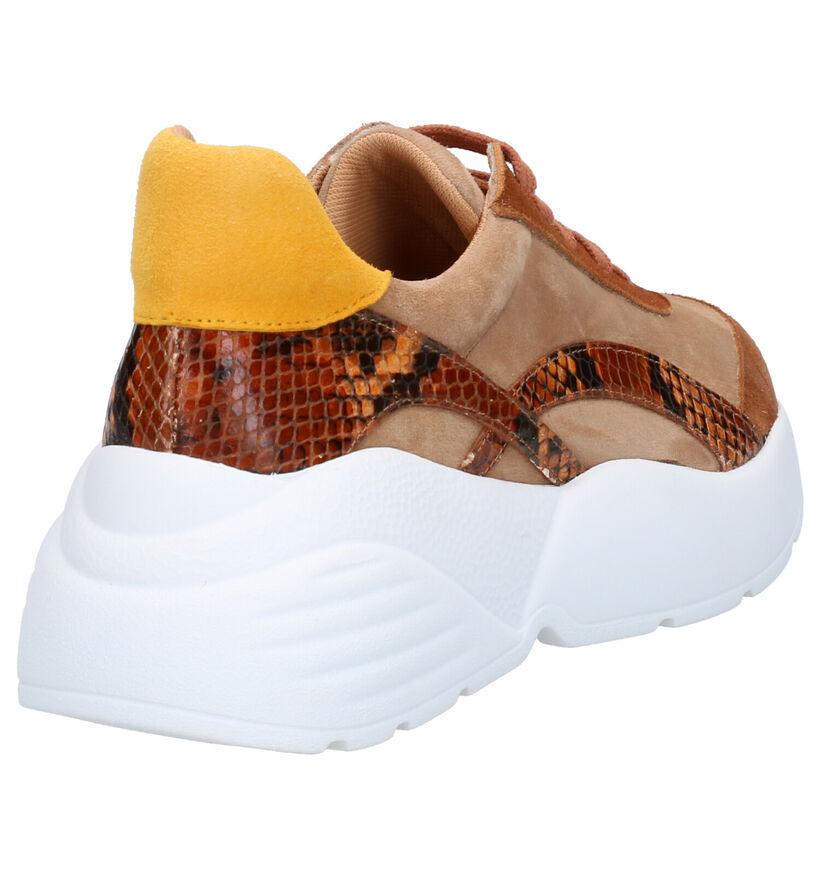 March23 Vivian Cognac Sneakers in leer (256898)