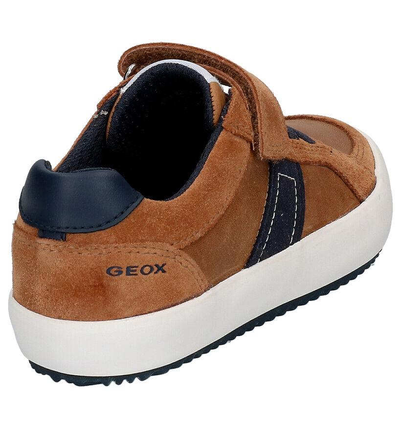 Geox Cognac Lage Sneakers in leer (265804)